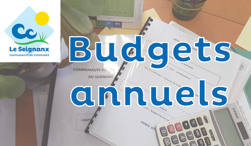 Budgets Annuels